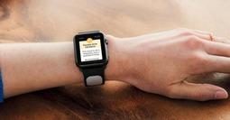 照顾心脏的苹果手表