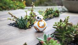 Sphero BB-8 智能机器人 星球大战 7 同款机器人