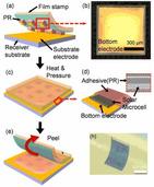 韩国研制出世界最薄光伏电池:厚度仅为人类头发直径百分之一