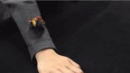 美国大学研发可穿戴迷你机器人 可自己爬随意变形