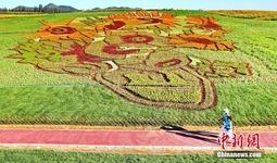 占地40亩的梵高名画《向日葵》亮相秦皇岛