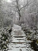 北京局地迎来下半年第一场雪