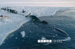 极地捕鲸者