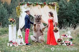俄罗斯最特殊的婚礼,灰熊当证婚人主持婚礼!