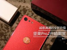 指纹识别集成在logo处 锤子坚果Pro2发布