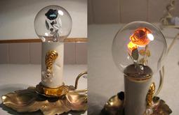 为什么这些老灯泡没有被淘汰,价格还翻了成千上百倍?