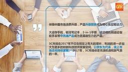 2017年中国3C市场行业报告