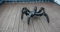 形似捕鸟蛛的六足机器人:轻松应付复杂地形