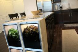 有了这款智能种植机,在家就能自己种蔬菜!
