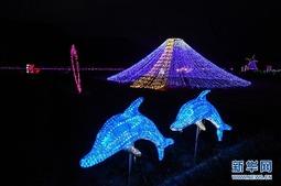 浙江义乌:夜间灯光秀 打造乡村旅游新亮点