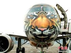"""巴西""""大老虎""""飞机降落重庆"""