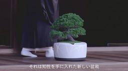 日本黑科技!人工智能盆栽,能陪人聊天!